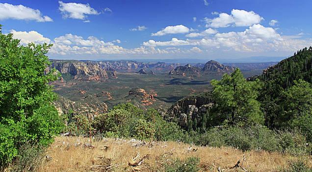 Remote Vista by Gary Kaylor