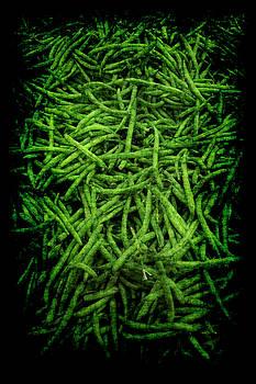 Renaissance Green Beans by Jennifer Wright