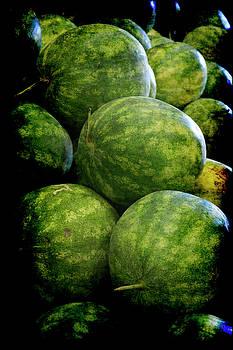 Renaissance Green Watermelon by Jennifer Wright