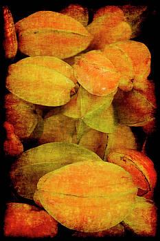 Renaissance Star Fruit by Jennifer Wright