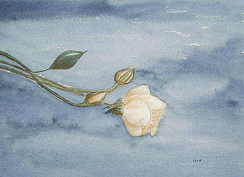 Renoir's Rose - Caught By the Frost by Cynthia Schoeppel