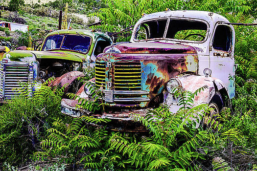 REO Truck Relic by Steven Bateson