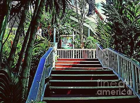 Gary Wonning - Resort stairway