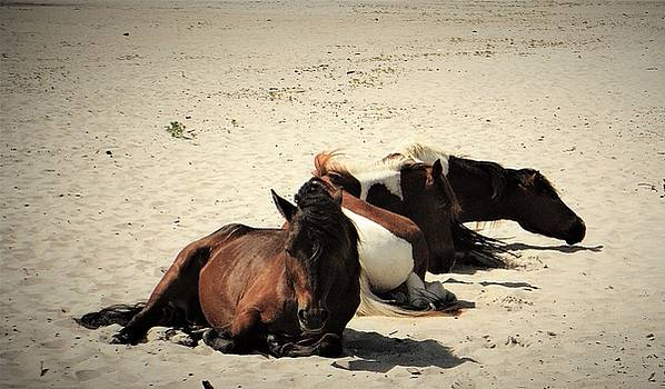 Rest and Relaxation on the Beach by Jacqueline Whitcomb