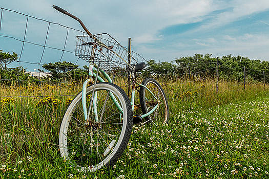 Resting Bike With Flowers by Jose Oquendo