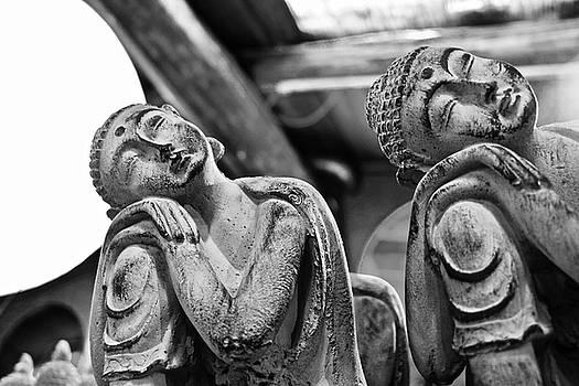 Resting Buddhas by Brian Sereda