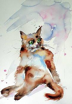 Resting cat by Kovacs Anna Brigitta