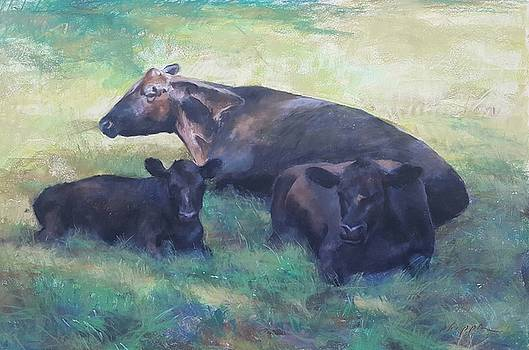 Resting Cows by Kelly Lanning Phipps