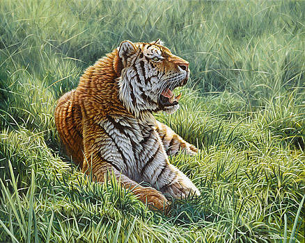 Resting in the grass by Eric Wilson