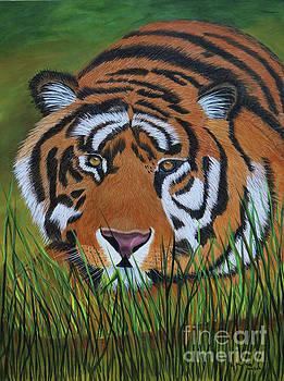 Resting Tiger  by Myrna Walsh