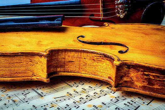 Resting Violin by Garry Gay