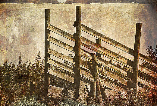 Retired Cattle Chute by Anita Hohl