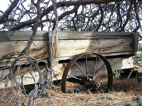 Retired Farm Wagon by Will Borden