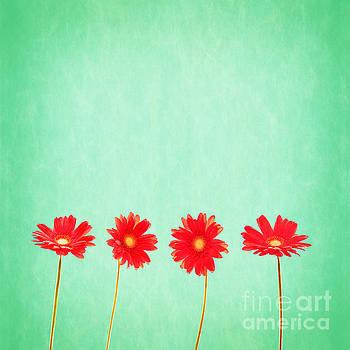 Delphimages Photo Creations - Retro flowers