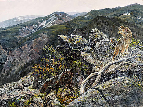 Return of the Wolf by Steve Spencer