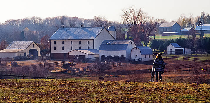 Returning, Bascule Farm, Poolesville, Maryland, Autumn 2001 by James Oppenheim