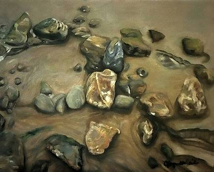 Revealed at Low Tide by J Reynolds Dail