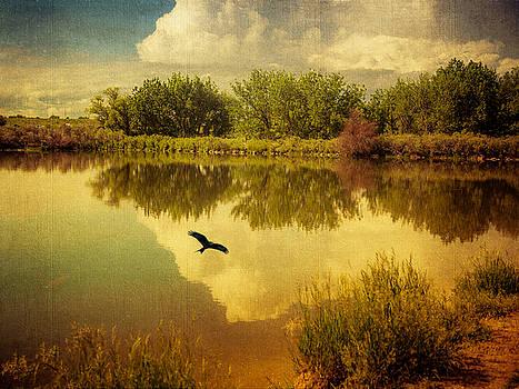 Reverie by Janice Bennett