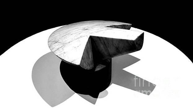 Revisiting Brancusi - Flying Turtle by Mioara Andritoiu