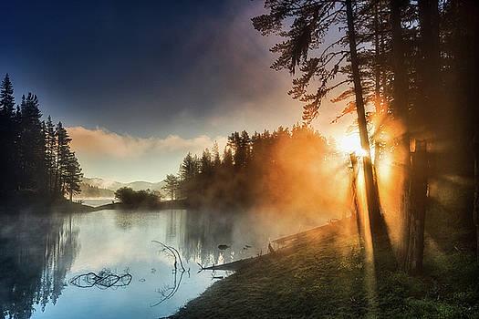 Revival by Evgeni Dinev