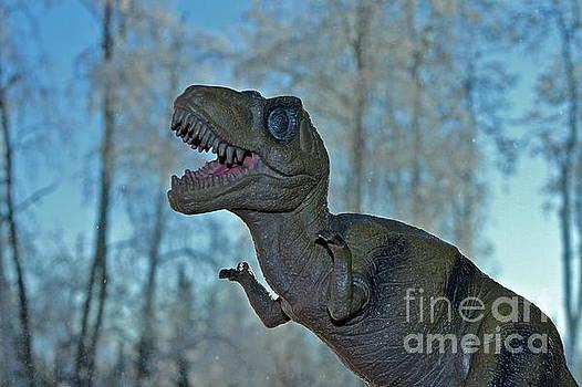Rex by Rick  Monyahan
