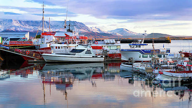 Reykjavik Old Harbor by Jerry Fornarotto