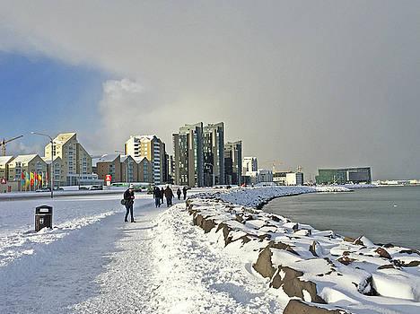 Reykjavik  Walk Way along the Bay Iceland 2 3122018 _j2340.jpg by David Frederick