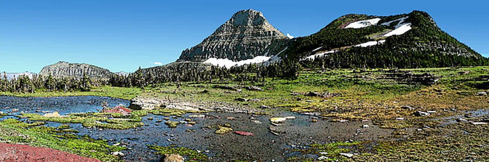Reynolds Peak Panorama by Larry Darnell