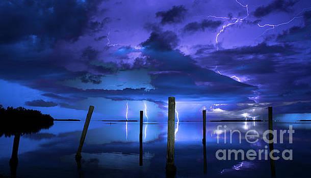 Blue Nights by Quinn Sedam