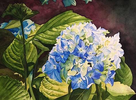 Rhapsody in Blue by Lynne Hurd Bryant
