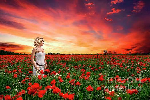 Rhapsody In Red by Evelina Kremsdorf