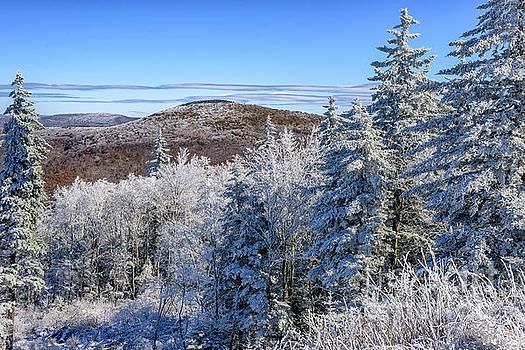 Rhime Ice Highlands West Virginia by Thomas R Fletcher