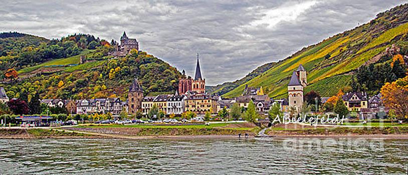 Rhine In Fall by April Bielefeldt