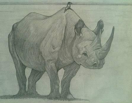 Rhino and Friend by Nigel Wynter