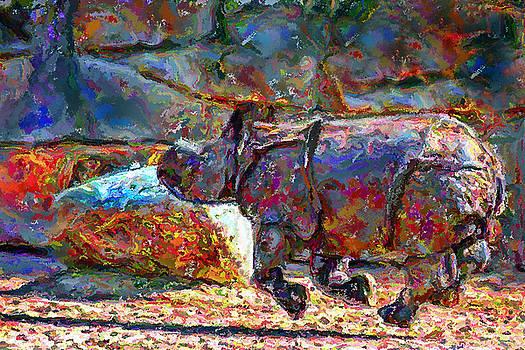 Marilyn Sholin - Rhino on the Run