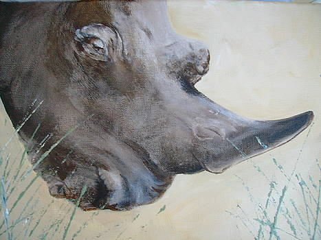 Rhino STOP the slaughter by Dion Halliday