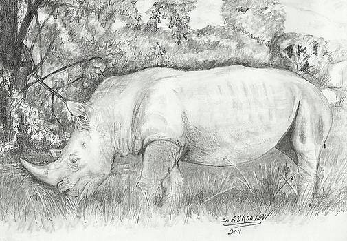 Rhino by Susan Bromlow
