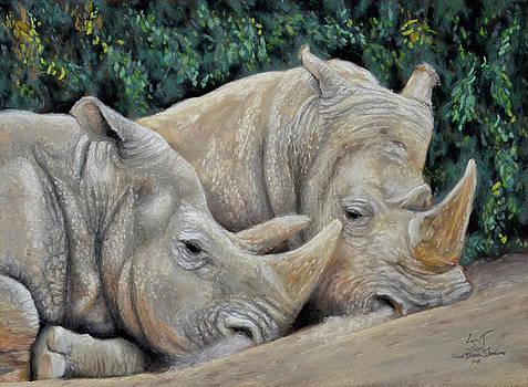 Sam Davis Johnson - Rhinos