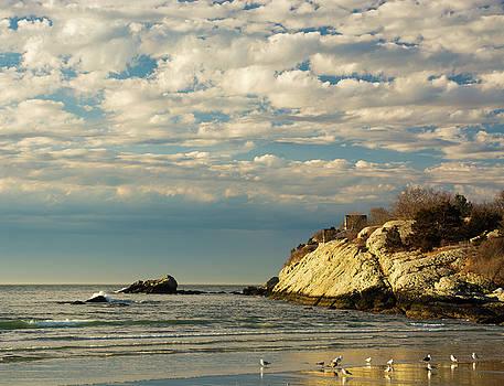 Rhode Island Beach in Winter by Nancy De Flon