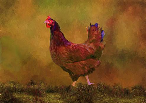 Rhode Island Red Hen by Sandi OReilly