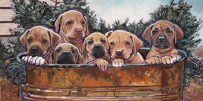 Rhodesian Ridgeback Puppies by Nadi Spencer