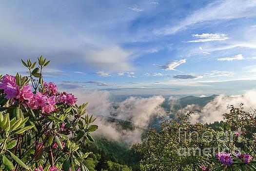 Rhodis on the top of the world. by Itai Minovitz