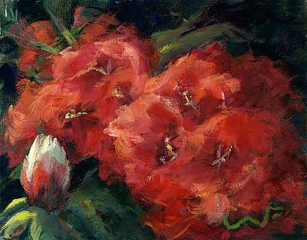 Rhododendron Gardens by Sharon Abbott-Furze