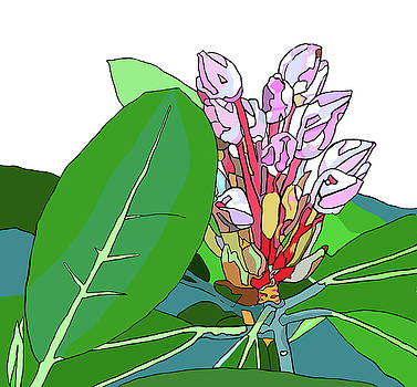 Rhododendron Graphic by Jamie Downs