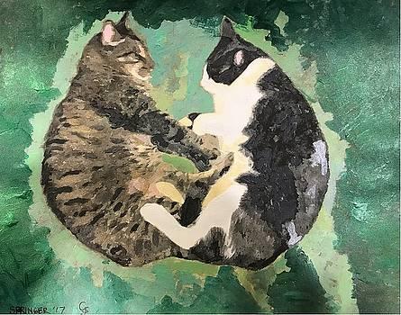 Rhonda's Cats by Gary Springer