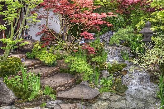RHS Chelsea Edo No Miwa - Edo Garden by Chris Day