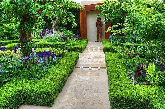 RHS Chelsea Healthy Cities Garden by Chris Day
