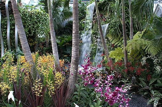 RHS Chelsea The Hidden Beauty of Kranji by Chris Day