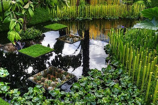 RHS Chelsea World Vision Garden by Chris Day