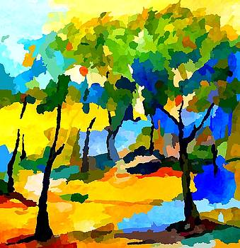 Rhythm of color by Eberhard Schmidt-Dranske